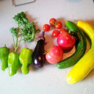 今朝の収穫